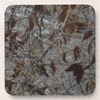 Icy Leaves Beverage Coaster