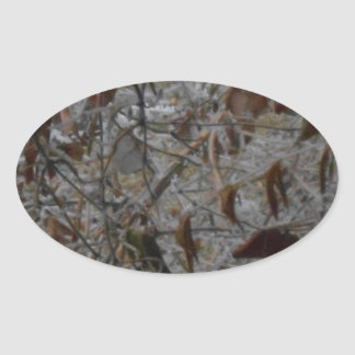 Icy Leaves Oval Sticker