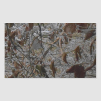 Icy Leaves Rectangular Sticker