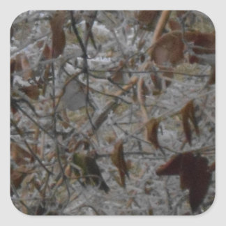 Icy Leaves Square Sticker