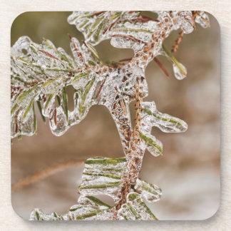 Icy Pine Needles Coaster