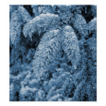 Icy pine tree poster