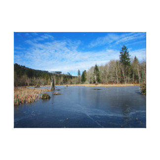 Icy Pond Canvas Print