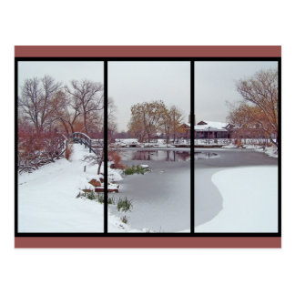 Icy Pond Post Cards