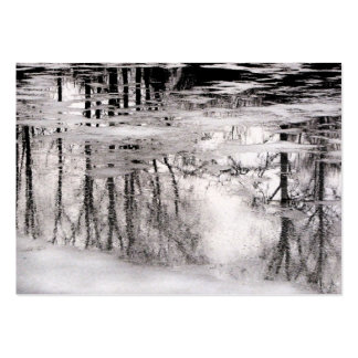 Icy Pond Reflections ATC Business Card