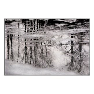 Icy Pond Reflections print
