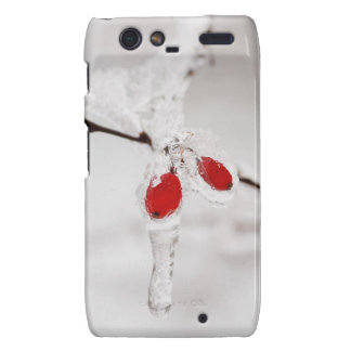 Icy Red Berries Droid RAZR Cases