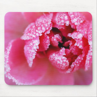 Icy rose mouse pad