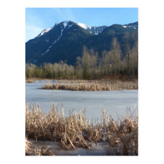 Icy Shallow Pond and Mountain Postcard
