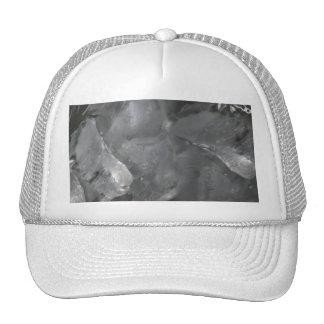 Icy Surprise Trucker Hat