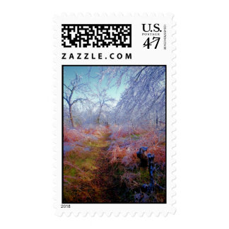 Icy Trail Postage