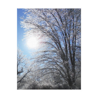 Icy Tree Branches Canvas Print