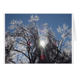Icy Tree in Winter Greeting Cards