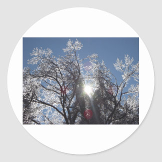Icy Tree in Winter Round Stickers