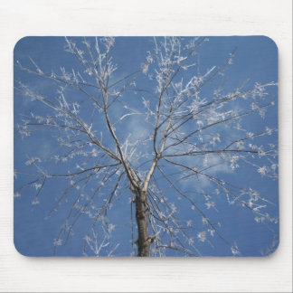 Icy Tree Mouse Pad