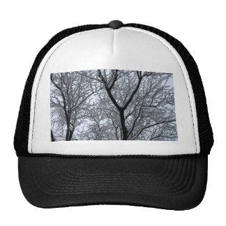 Icy Tree Trucker Hat