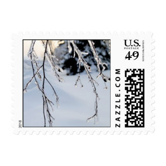 Icy Trees Postage Stamp