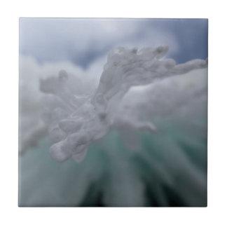 Icy Winter Ceramic Tile