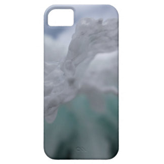Icy Winter iPhone SE/5/5s Case