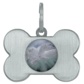 Icy Winter Pet Tag