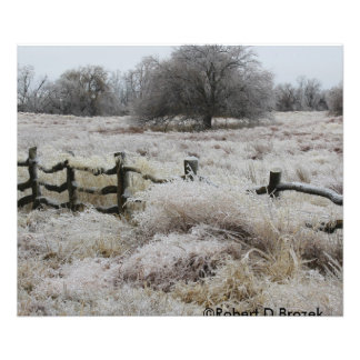 ICY Wooden Fence Photo Print