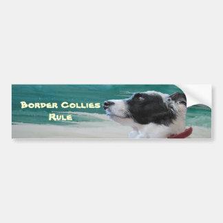 icybluebordercollie, Border Collies Rule Bumper Sticker
