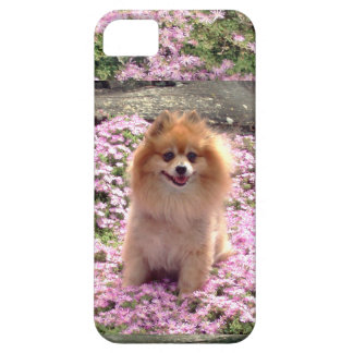 ID/Credit Card iPhone 5 Pomeranian Pink Flowers iPhone 5 Covers