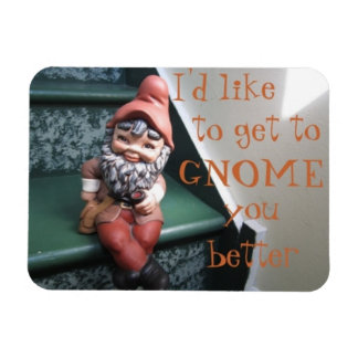 I'd like to get to GNOME you better Magnet
