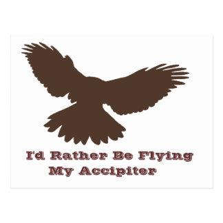 I'd Rather be Flying Postcard