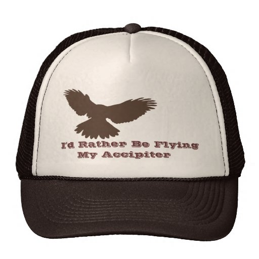 I'd Rather be Flying Trucker Hat