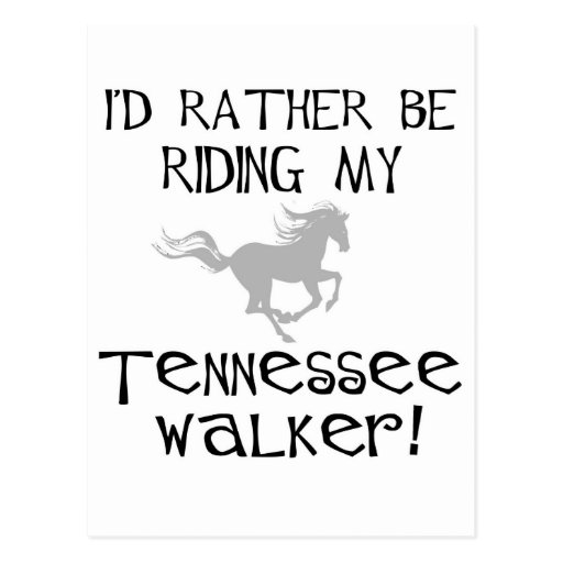 I'd Rather Be Riding My Tennessee Walker Postcard