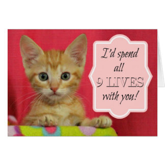 I'd Spend All 9 Lives With You Love Card