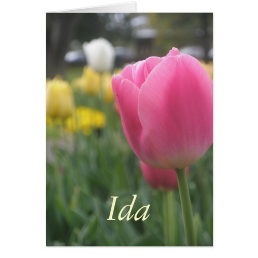 Ida Greeting Card