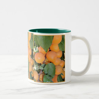 Idaho Apricots Two-Tone Coffee Mug