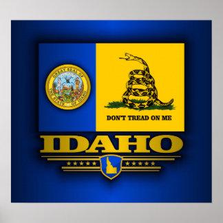 Idaho (DTOM) Póster