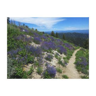 Idaho Mountain Hiking Trail Canvas Print