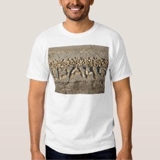 Idaho Potatoes Shirts