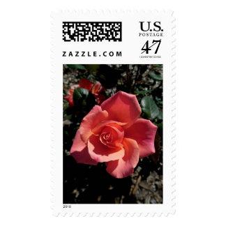 Idaho Rose Postage