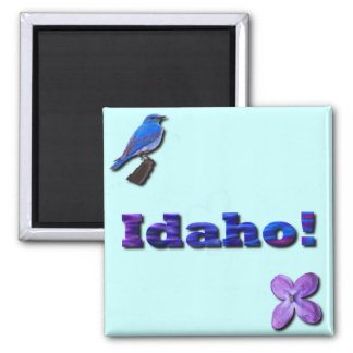 Idaho State 2 Inch Square Magnet