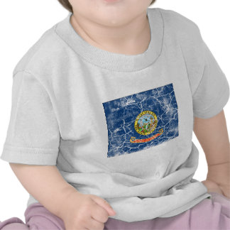 Idaho State Flag Vintage Shirt