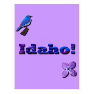 Idaho State Postcard