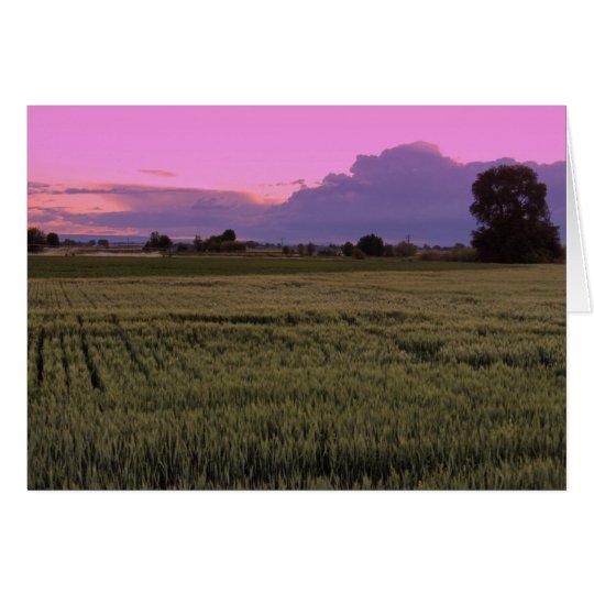Idaho Sunset Card