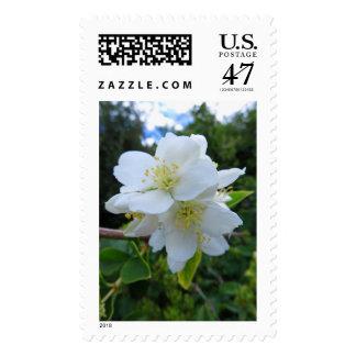 Idaho Syringa Postage