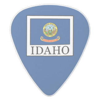 Idaho White Delrin Guitar Pick