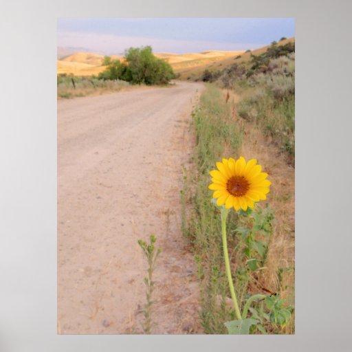 Idaho Wild Sunflower Print