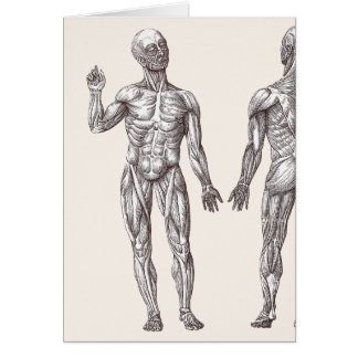 Ideas Originate in the Muscles for Fitness Addict Greeting Card