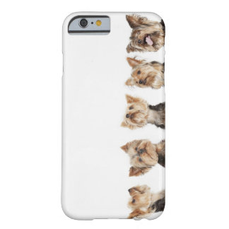 Identical dogs sitting together barely there iPhone 6 case