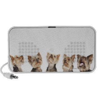 Identical dogs sitting together speaker system