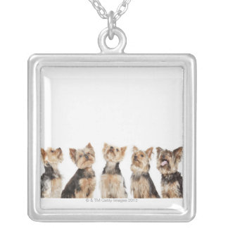 Identical dogs sitting together square pendant necklace