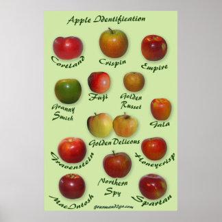 Identificación de Apple Póster